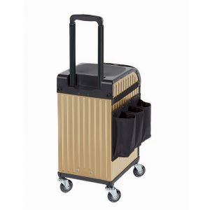 Sibel - RollerCoaster StoolCase - Gold